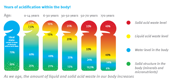 acidification within body